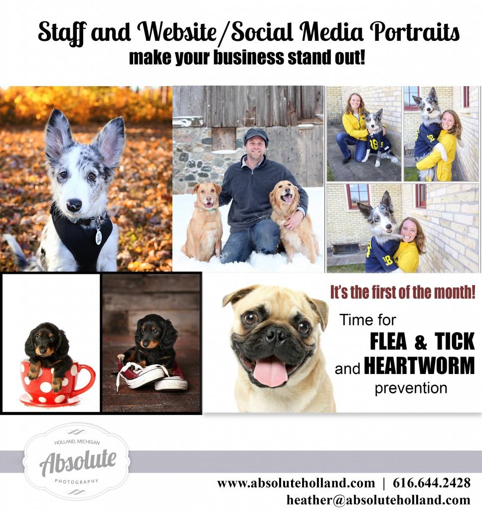 Veterinary Portraits